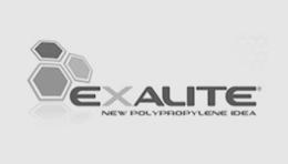 Karton - Exalite logo
